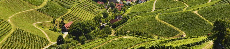durbach-imago0075051435h_0